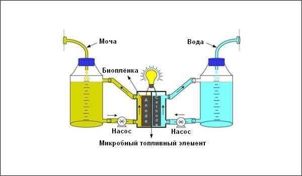 Электричество из воды своими руками схема