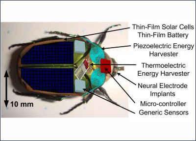 Сверху вниз: тонкопленочная солнечная панель; пьезоэлектрический генератор; термоэлектрический генератор; невральный имплантант; микроконтроллер; сенсор (полезная нагрузка)