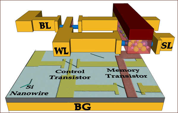 Структура FeTRAM памяти