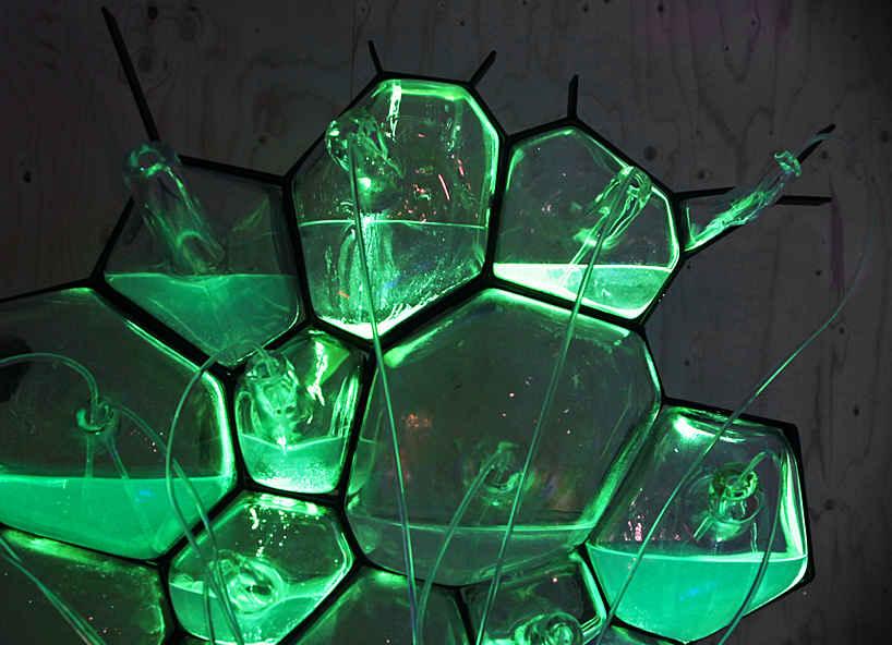 Люминесцентный биосветильник